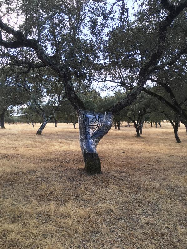 Land art france